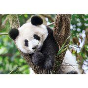 Puzzle 104 db-os - WWF Édes panda - Clementoni (27997)