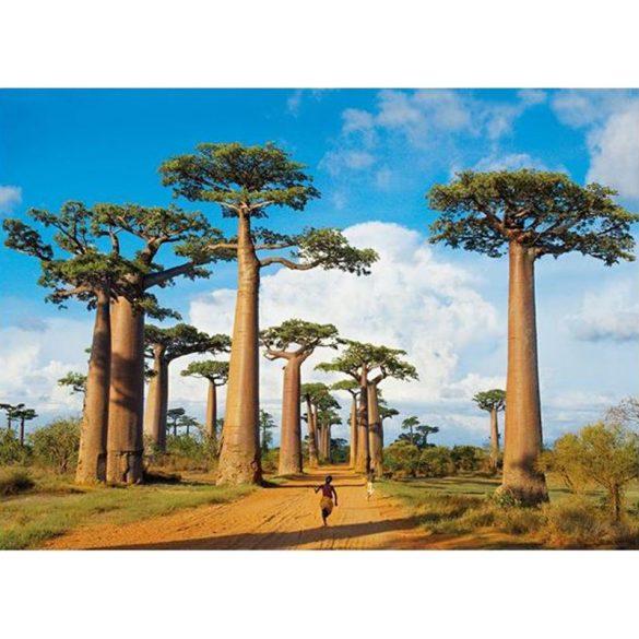 Puzzle 1000 db-os - Madagaszkár - Clementoni