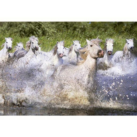 Fehér lovak, 1000 darabos Educa puzzle
