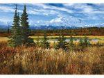 Denali park-USA, 1500 darabos Educa puzzle