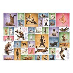 Eurographics 1000 db-os Puzzle - Yoga Cats - 6000-0953