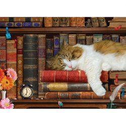 EuroGraphics 500 db-os puzzle - XXL Pieces - The Cat Nap 6500-5545