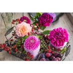 Puzzle 1000 db-os - Bogyók és virágok - Schmidt 58369