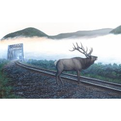 Sunsout 500 db-os puzzle - Dan Christ - Elk Tracks 48856